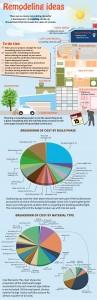 Home Improvement Infographic
